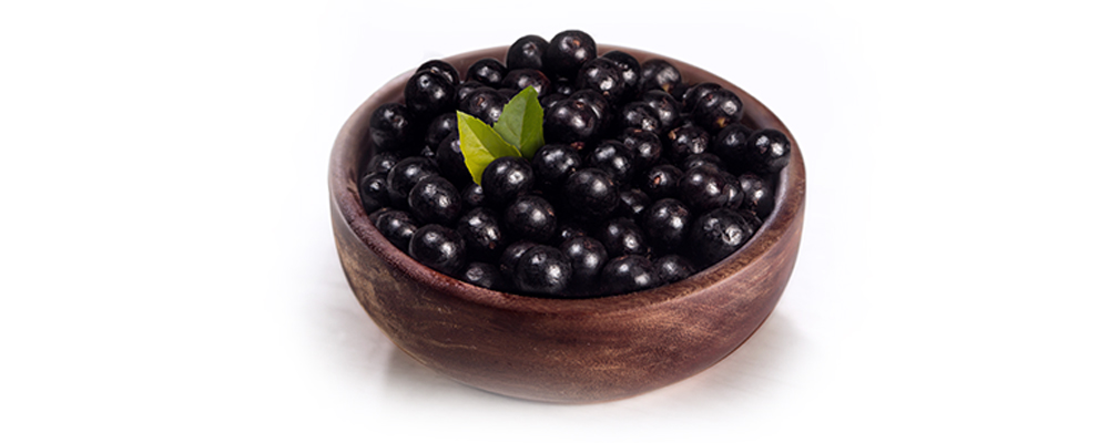 Fruit of Açaí